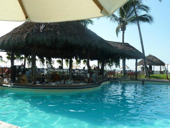 Plaza Pelicanos Grand Beach Resort: swim-up bar