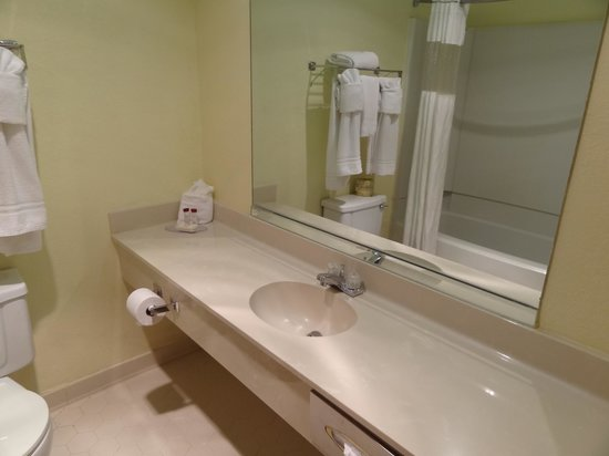 Ramada Asheville Southeast: bathroom with jacuzzi