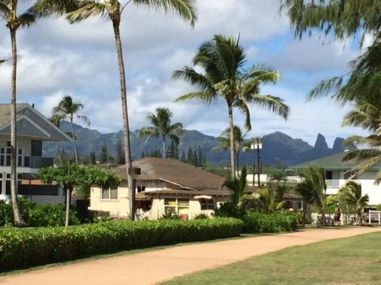 Honu'ea International Hostel Kauai: Kapaa Beach walking, biking and jogging path