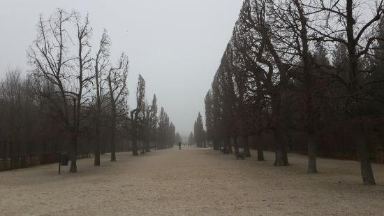 Schloss Schönbrunn: Photo of Schonbrunn Palace taken with TripAdvisor City Guides