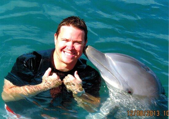 Dolphin Cove: Claissa