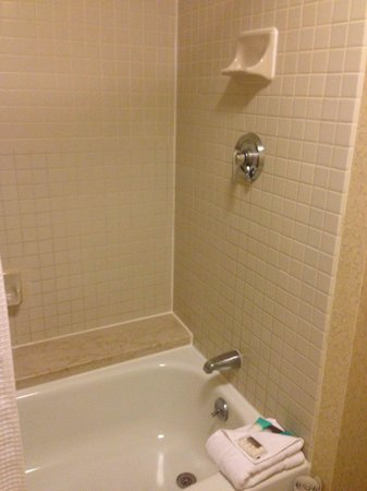 Hyatt Regency Boston : Shower and bath