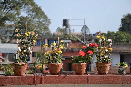 Hotel Encounter Nepal: terrace
