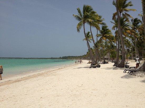 Barcelo Bavaro Beach - Adults Only: Hermosa playa