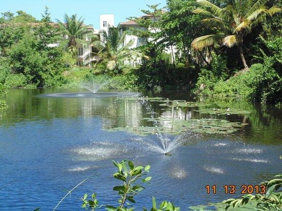 BlueBay Villas Doradas Adults Only: Along the walkway