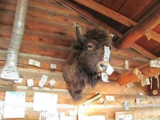 The Bucksnort Saloon: Buffalo Bill