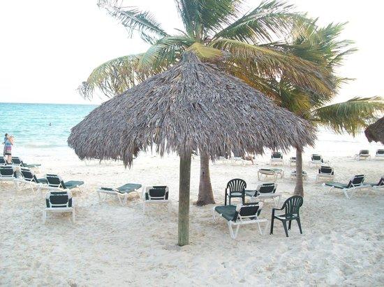 Island Seas Resort : Beach entrance