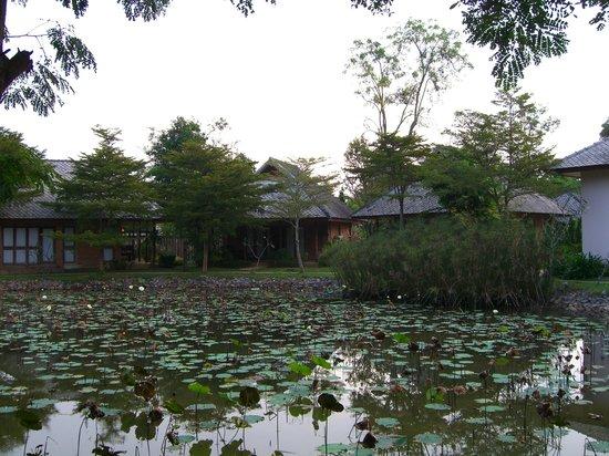 Phowadol Resort and Spa: pond