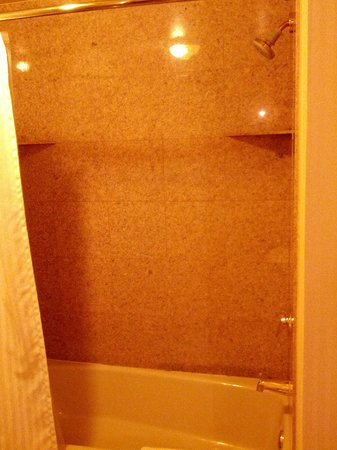 The Berkeley Hotel : Shower