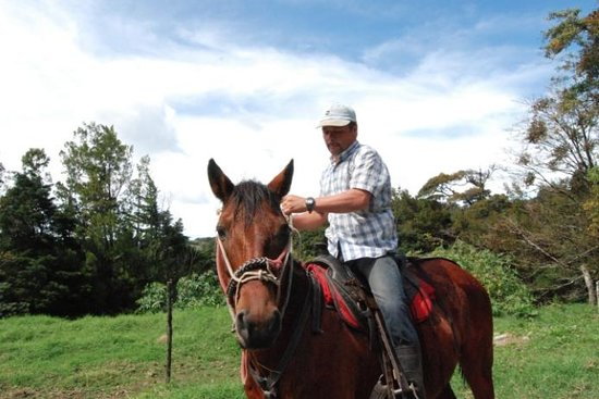 Desafio Monteverde Tours -  Day Tours: Marvin, our tour guide