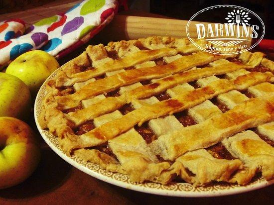 Darwins: Pays hechos en casa, manzana, pera, calabaza, moras