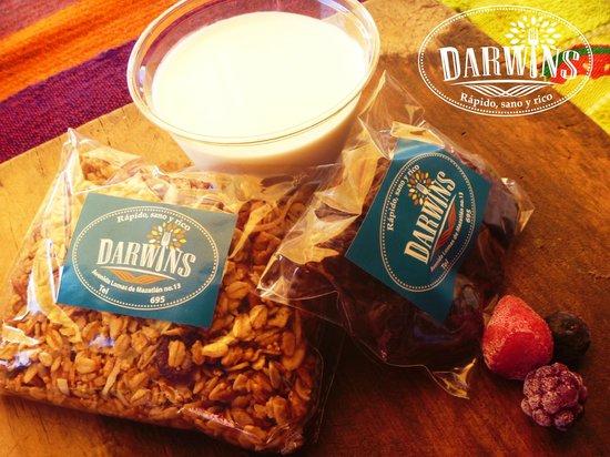 Darwins: Venta de granola hecha en casa, dátiles y vasito de yogurt para beber