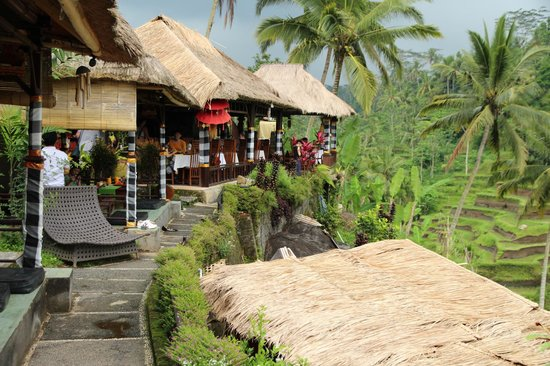 Tegalalang Rice Terrace: Restaurants and Cafes overlooking the rice terrace