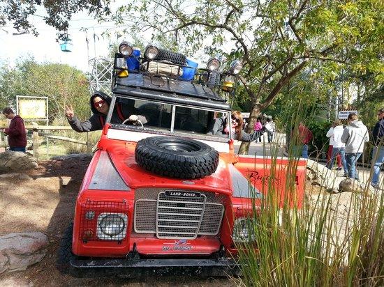 Econo Lodge Busch Gardens: Bush Garden! Mi parque Favorito!!!