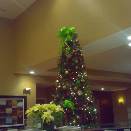 Holiday Inn & Suites Columbia - Airport: Lobby Christmas Tree