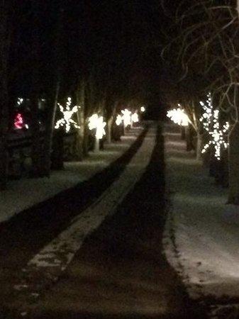 Abendblume : lit driveway