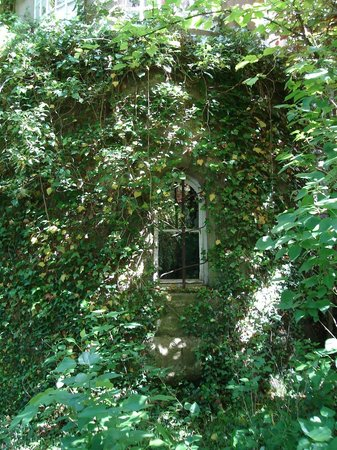 Massbach, Tyskland: A few hundred years of ivy hide the lower windows of the old manner house above town.