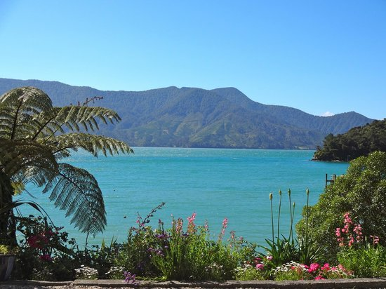 Te Mahia Bay Resort : View of the beautiful Bay at Te Mahia