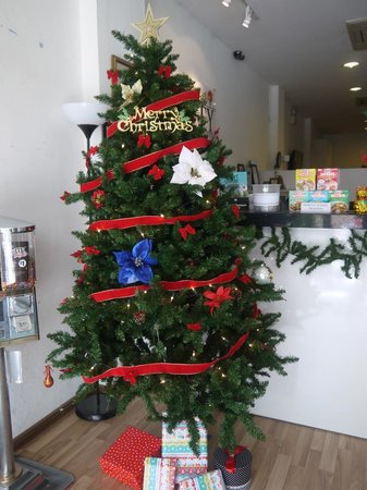 New Society Backpackers' Hotel: X-mas tree welcoming you