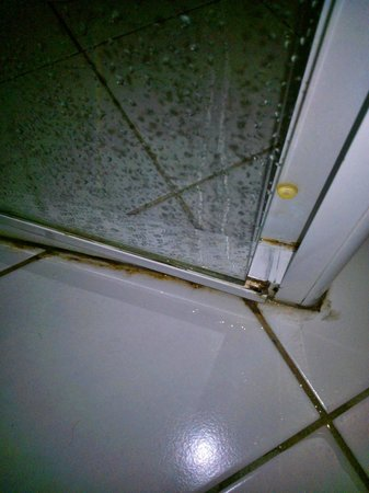 Oaks on Castlereagh: the cleaning of this bathroom was disgusting