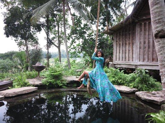 Rope Swing Over Pool Picture Of Bambu Indah Ubud