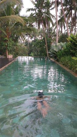 Swarapadi Villa: Infinity pool