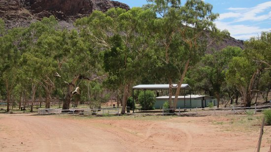 Ross River Resort: Pretty good looking camping facilities