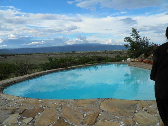 Manyara Wildlife Safari Camp: infinity pool