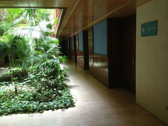 Hotel Escuela Santa Cruz: Проход к номерам
