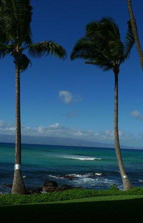 Noelani Condominium Resort: view from our patio