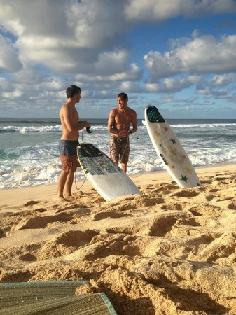 Active Oahu Tours: surf lessons for the absolute beginner to the advanced