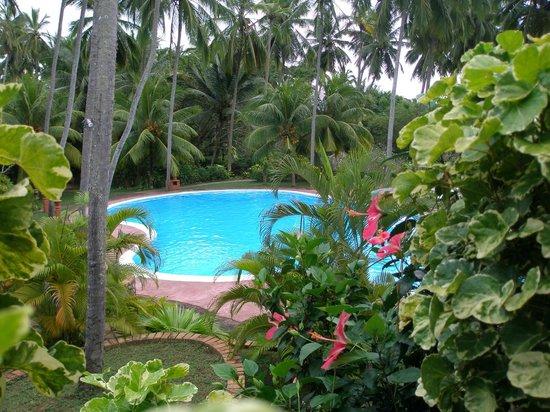 Eva Lanka Hotel: Большой бассеин