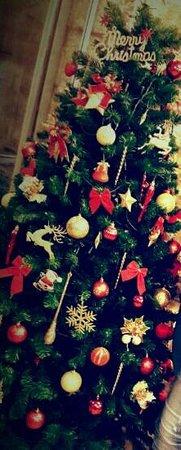 Yerevan restaurant: yerevan christmas tree