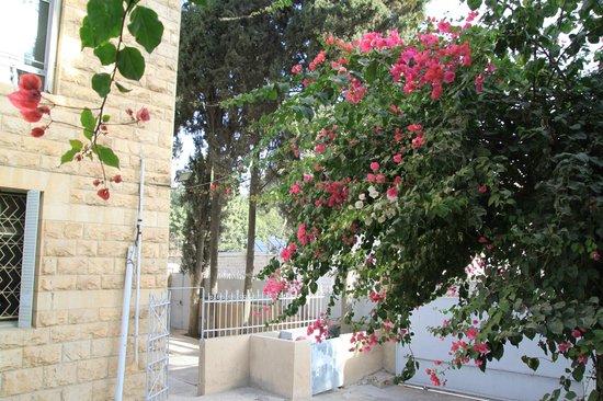 Franciscaines de Marie: Garden