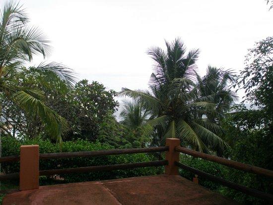 Eva Lanka Hotel: Вид из шале 22.