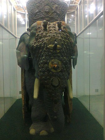 National Museum: Elephant Shield (for protection).