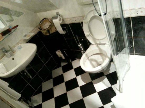 Hotel U Zlateho Stromu: wc