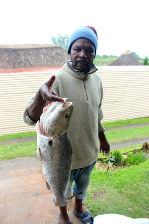 Mdumbi Backpackers: Fresh fish for dinner