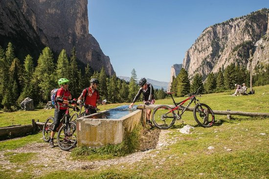 Kedul Alpine Lodge: Easy, intermediate and expert rides: every mountainbiker finds the ride tour in Val Gardena