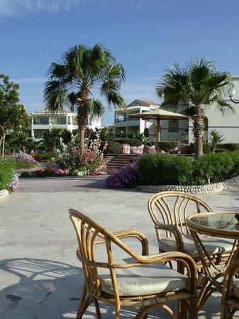 Harmony Makadi Bay Hotel & Resort: Территория отеля