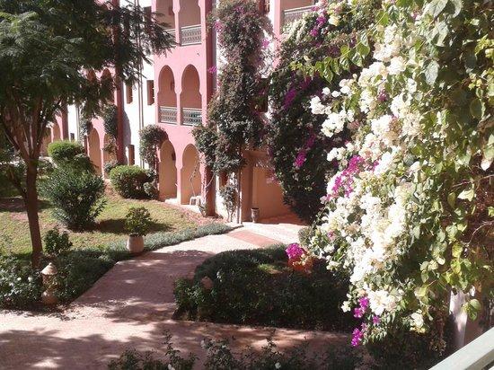 Club Eldorador Palmeraie: vue de notre chambre