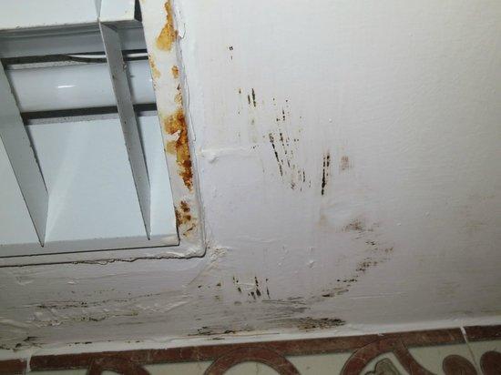 Hotel Riu Palace Las Americas: room, bathroom mold damage