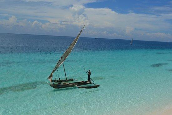 Royal Zanzibar Beach Resort: Vista dal belvedere