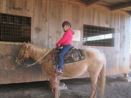 Adventure Trail Rides: daughters horse