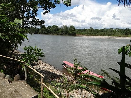 Ecuador Chocolate Lodge : vista al rio