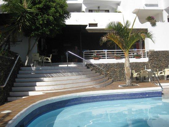 The Pool Shack: The bar area