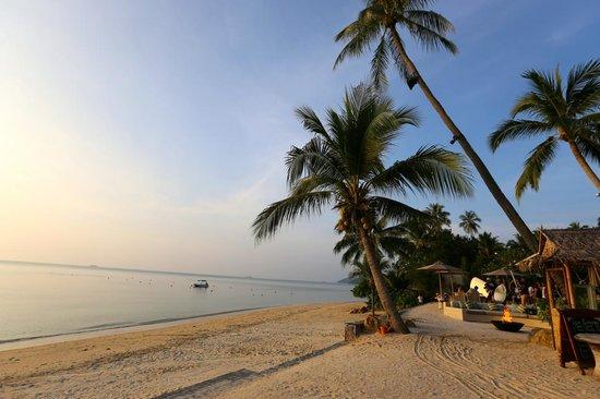InterContinental Samui Baan Taling Ngam Resort: beautiful beach