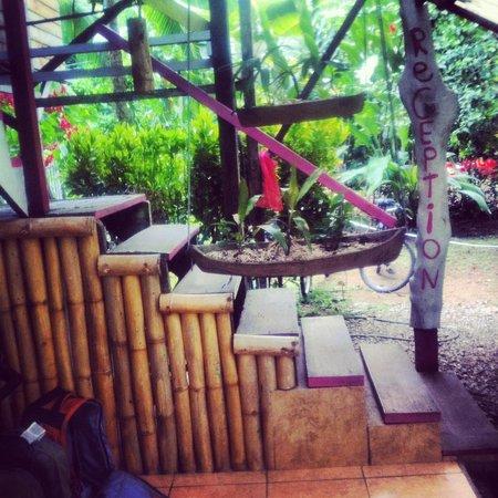 Vista Verde Guest House: Vista verde reception