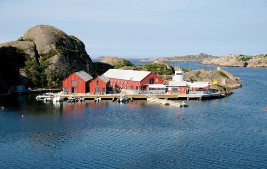 Norway Dating Site Råholt