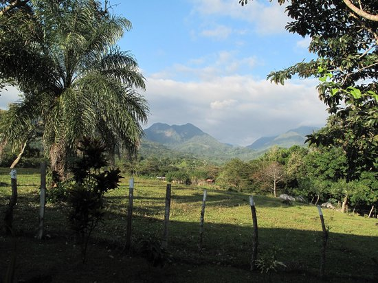 Coffee Mountain Inn : Typical Patio view